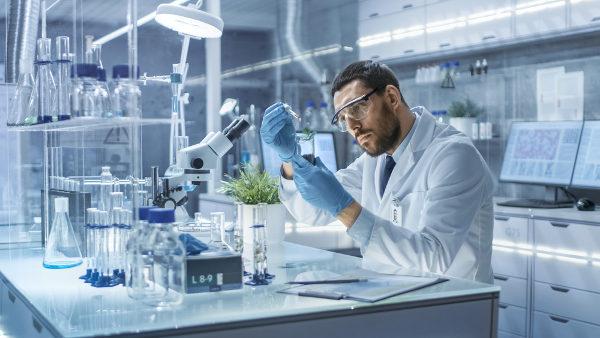 Após a conclusão do curso, o profissional deve registrar-se no Conselho para que possa atuar como Biólogo.
