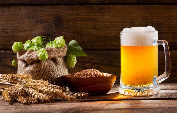 As diferentes variedades de lúpulo garantem diferentes sabores e aromas às cervejas.