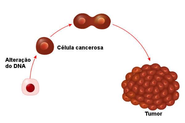 Quando genes específicos são ativados, a célula começa a multiplicar-se de maneira desordenada.