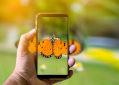 Mão masculina tirando foto de borboleta no celular